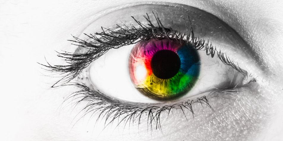 d880e9cfe5b OCT Eye Scan at Benjamin Opticians